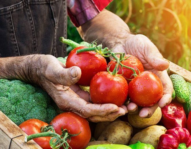 farmer-veg